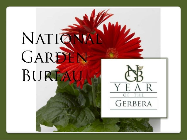 2013 National Garden Bureau Year of the Gerbera
