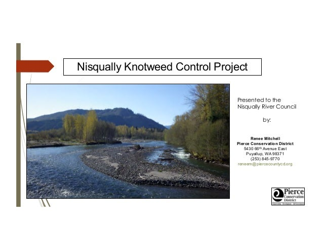 Nisqually Knotweed Control Project Presented to the Nisqually River Council by: Renee Mitchell Pierce Conservation Distric...