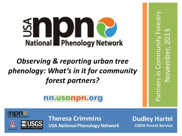 Theresa Crimmins USA National Phenology Network  November, 2013  Partners in Community Forestry  Observing & reporting urb...