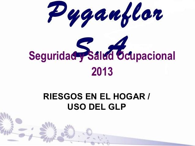 Pyganflor S.A.Seguridad y Salud Ocupacional 2013 RIESGOS EN EL HOGAR / USO DEL GLP