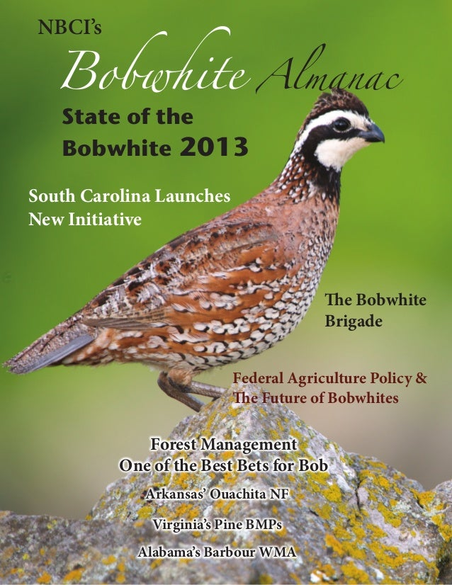 Bobwhite  NBCI's  State of the Bobwhite 2013  Almanac  South Carolina Launches New Initiative  The Bobwhite Brigade Federa...