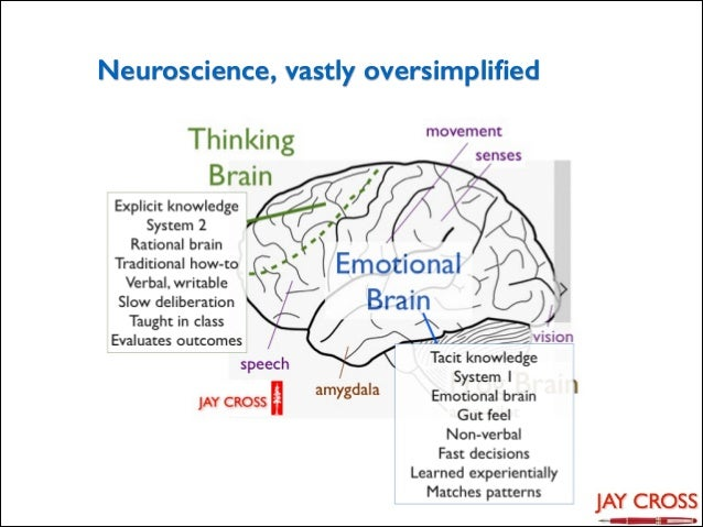 Neuroscience, vastly oversimplified