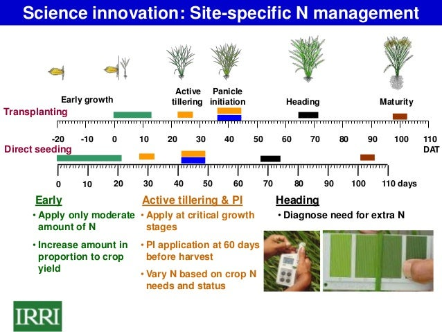 innovation in agriculture The relevance of innovation in agriculture to face global challenges and turn agriculture to a more competitive, sustainable and inclusive activity.