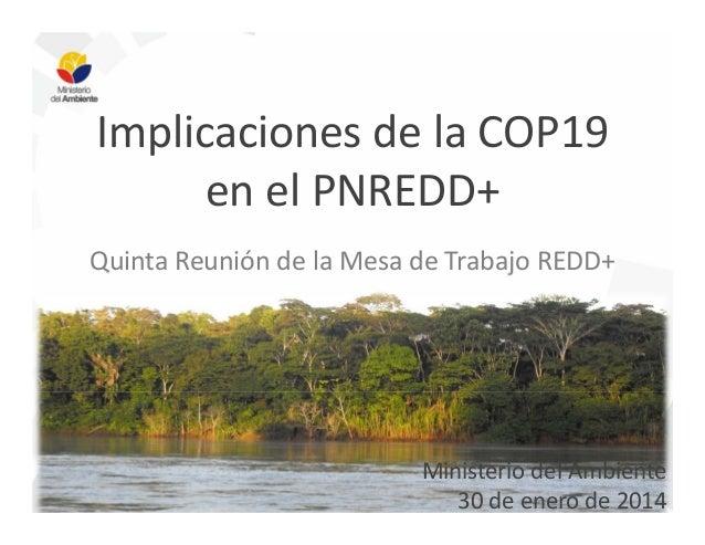 Implicaciones de la COP19 en el PNREDD+ Quinta Reunión de la Mesa de Trabajo REDD+  Ministerio del Ambiente 30 de enero de...