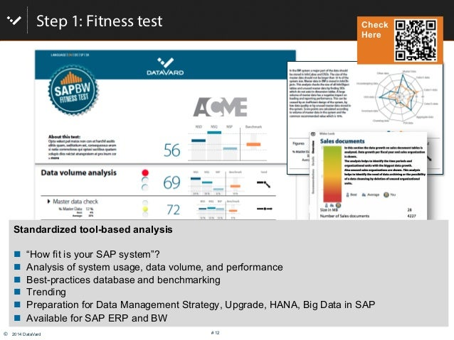 """© 2014 DataVard # 12 Step 1: Fitness test Standardized tool-based analysis # """"How fit is your SAP system""""? # Analysis o..."""