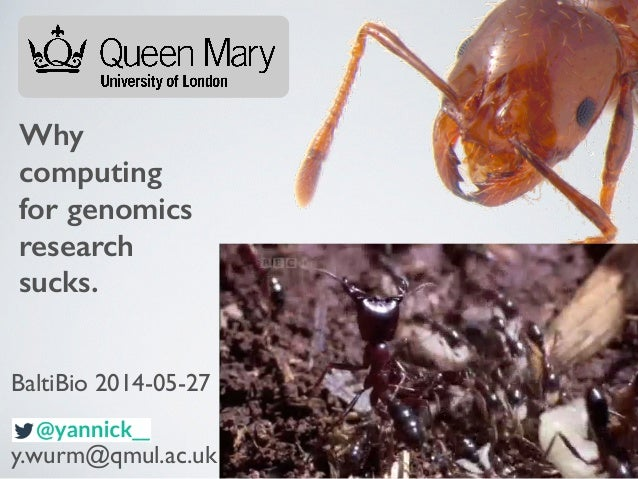 Why computing for genomics research sucks. y.wurm@qmul.ac.uk BaltiBio 2014-05-27