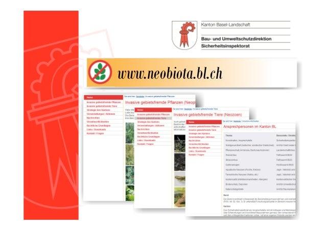 • Es gibt viele Fragen zum Thema Neobiota: • Was sind Neobiota? • Wieso soll ich keinen Kirschlorbeer pflanzen? • Sind Neo...