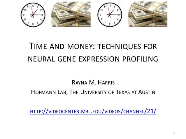 TIME AND MONEY: TECHNIQUES FOR NEURAL GENE EXPRESSION PROFILING RAYNA M. HARRIS HOFMANN LAB, THE UNIVERSITY OF TEXAS AT AU...