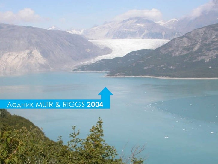 Ледник  MUIR & RIGGS  2004