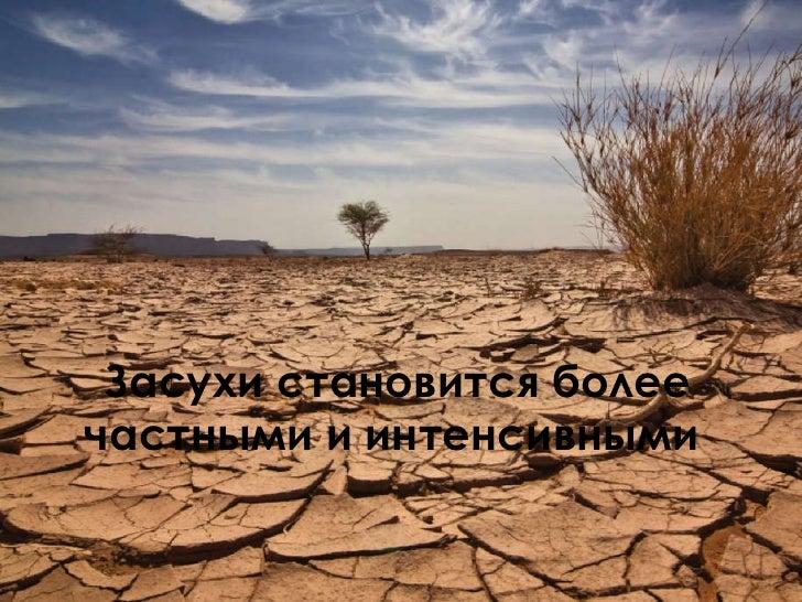 Засухи становится более частными и интенсивными