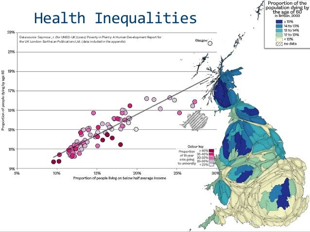 Social Inequalities and Health – The Black Report - Assignment Example