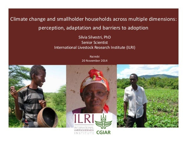 Climate change and smallholder households across multiple dimensions: perception, adaptation and barriers to adoption Silv...