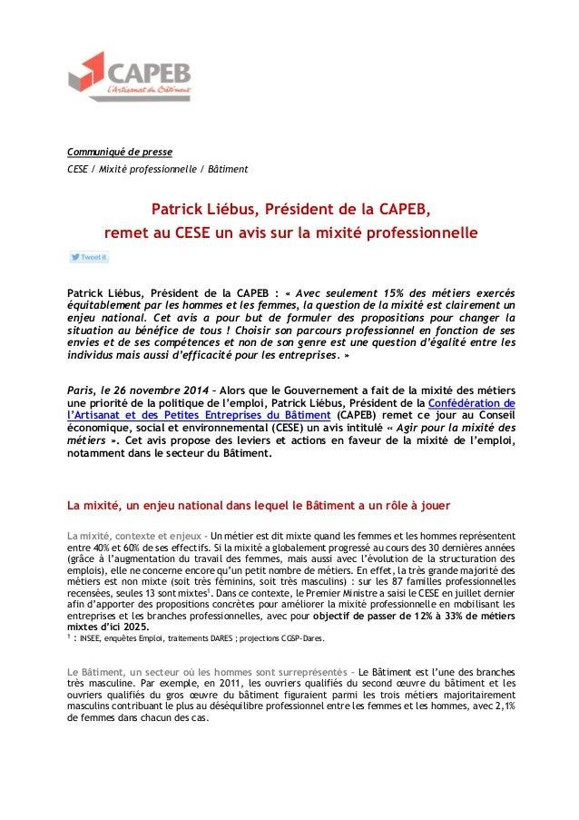 Communiqué de presse  CESE / Mixité professionnelle / Bâtiment  Patrick Liébus, Président de la CAPEB,  remet au CESE un a...