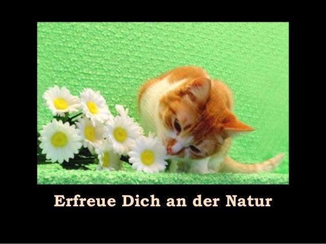 Erfreue Dich an der Natur