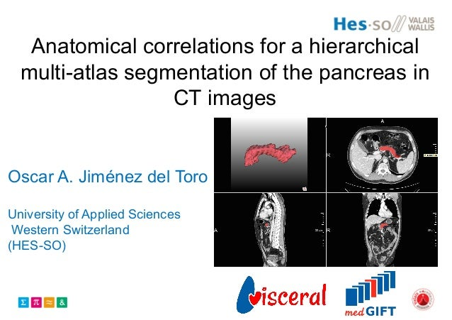 Anatomical correlations for a hierarchical multi-atlas segmentation of the pancreas in CT images Oscar A. Jiménez del Toro...