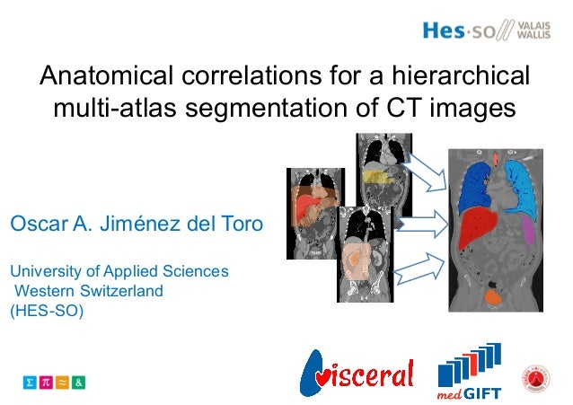 Anatomical correlations for a hierarchical multi-atlas segmentation of CT images Oscar A. Jiménez del Toro University of A...