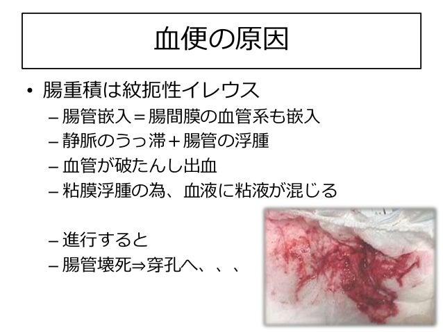 血便 幼児