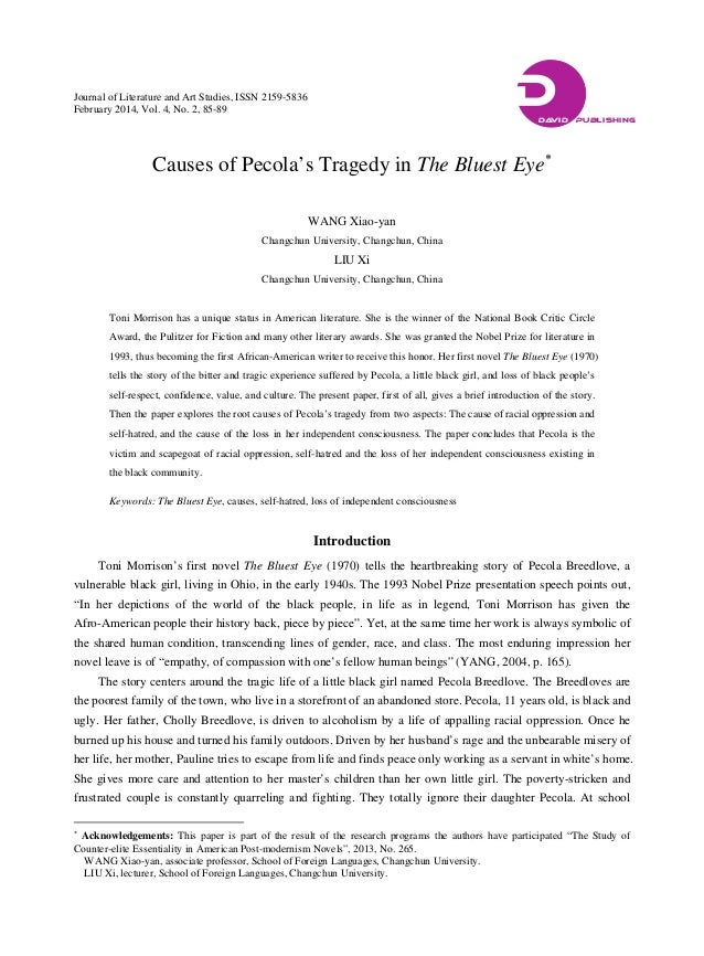 a literary analysis of personal identity in the bluest eye by toni morrison Critical analysis on meridian, written by alice walker, and the bluest eye, written by toni morrison some works of literature are dependent upon a specific ethnic, cultural, or.