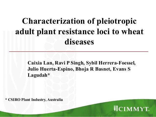 Characterization of pleiotropic adult plant resistance loci to wheat diseases Caixia Lan, Ravi P Singh, Sybil Herrera-Foes...