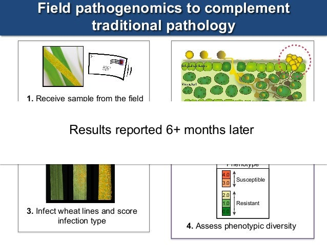 pathogenomics the genetics of pathogens Plant pathogenomics and their challenges and opportunities  analyzing of  pathogenic genome identification of genetic sources of virulence.