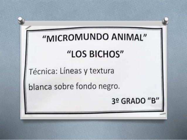2014-3b-PlásticaBichos