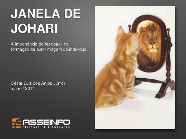 JANELA DE JOHARI A importância do feedback na formação da auto-imagem do indivíduo. César Luiz dos Anjos Júnior junho / 20...