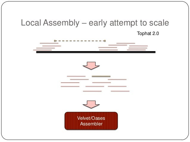 Local Assembly – early attempt to scale Tophat 2.0  Velvet/Oases Assembler