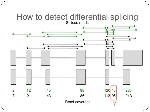 How to detectSpliced reads differential splicing  2 7  12 21  45 43  98 86  Read coverage  120 45 112 95  ?  230 243