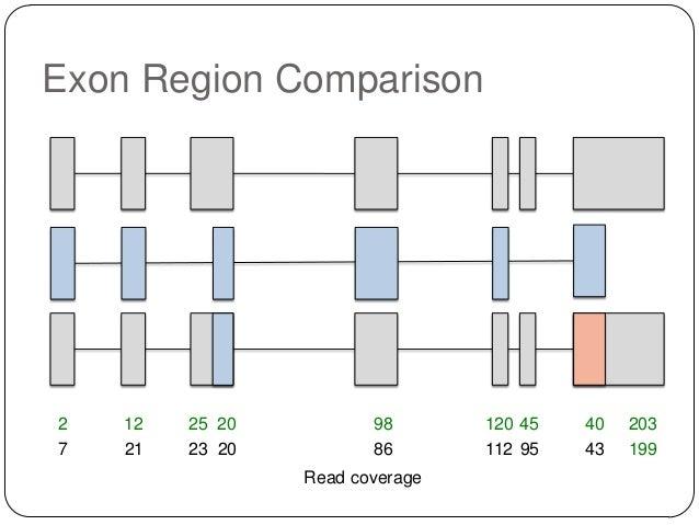 Exon Region Comparison  2 7  12 21  25 20 23 20  98 86  Read coverage  120 45 112 95  40 43  203 199