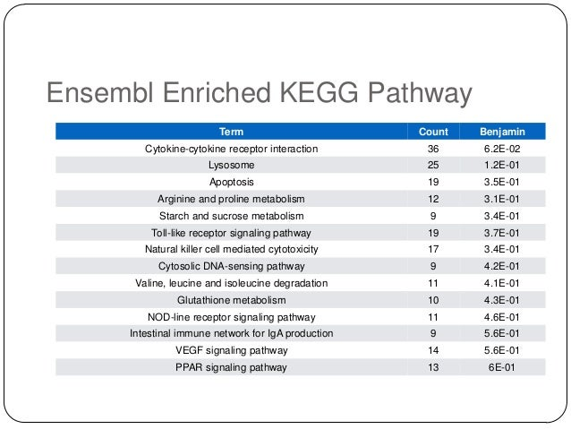Ensembl Enriched KEGG Pathway Term  Count  Benjamin  Cytokine-cytokine receptor interaction  36  6.2E-02  Lysosome  25  1....