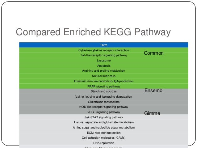 Compared Enriched KEGG Pathway Term Cytokine-cytokine receptor interaction Toll-like receptor signaling pathway  Common  L...