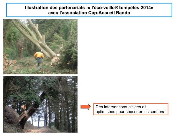 Illustration des partenariats :«l'éco-veilleIllustration des partenariats :«l'éco-veille®tempêtes 2014®tempêtes 2014»»...