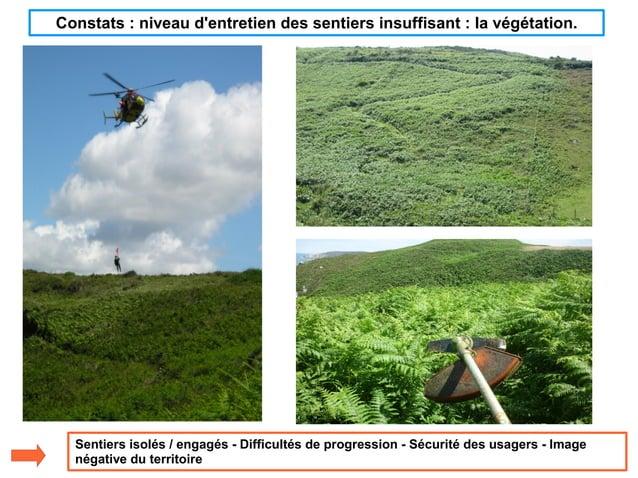 Constats : niveau d'entretien des sentiers insuffisant : la végétation. Sentiers isolés / engagés - Difficultés de progres...