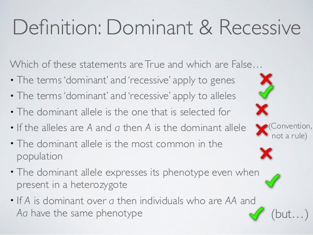 What Is the Relationship Between a Chromosome & an Allele?