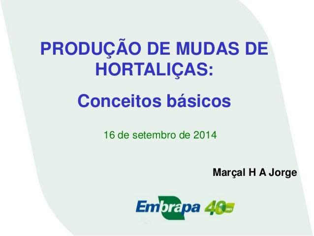 PRODUÇÃO DE MUDAS DE HORTALIÇAS:  Conceitos básicos  16 de setembro de 2014  Marçal H A Jorge