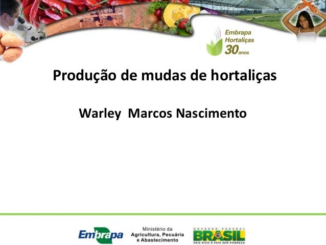 Produção de mudas de hortaliças  Warley Marcos Nascimento