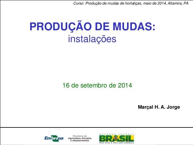 Pantanal  PRODUÇÃO DE MUDAS:  instalações  16 de setembro de 2014  Marçal H. A. Jorge  Curso: Produção de mudas de hortali...