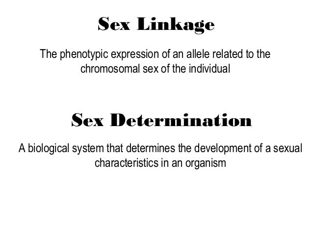 Sex linkage power point presentations