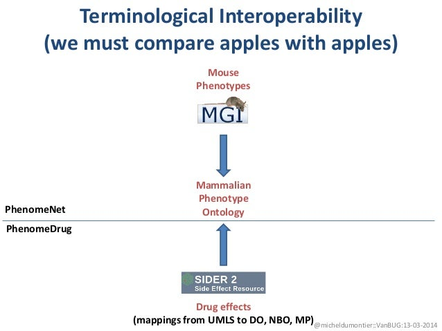 Terminological Interoperability (we must compare apples with apples) Mouse Phenotypes Drug effects (mappings from UMLS to ...