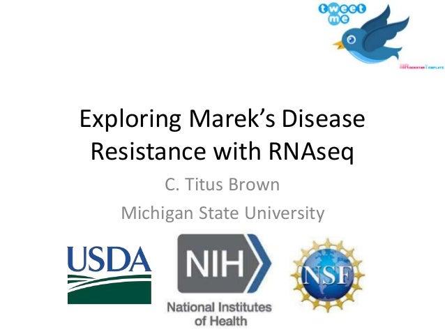 Exploring Marek's Disease Resistance with RNAseq C. Titus Brown Michigan State University