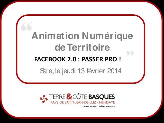Animation N umérique de Territoire FACEBOOK 2.0 : PASSER PRO ! S le jeudi 13 février 2014 are,  1