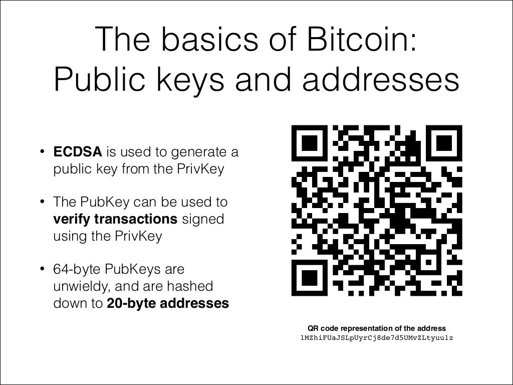 How are public and private keys related to the wallet ...