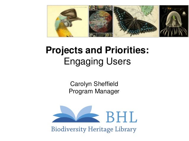 Projects and Priorities: Engaging Users Carolyn Sheffield Program Manager