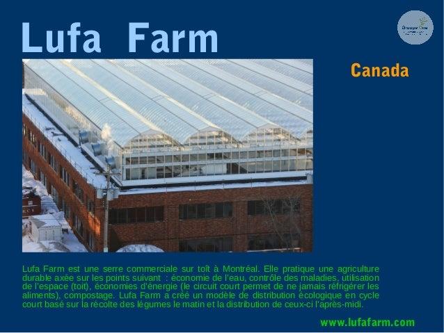 Lufa Farm Lufa Farm est une serre commerciale sur toît à Montréal. Elle pratique une agriculture durable axée sur les poin...