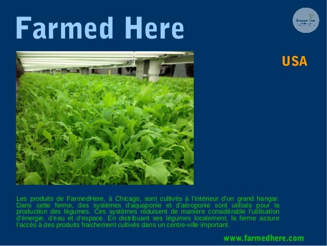 Farmed Here Les produits de FarmedHere, à Chicago, sont cultivés à l'intérieur d'un grand hangar. Dans cette ferme, des sy...