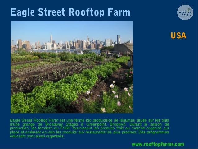 Eagle Street Rooftop Farm Eagle Street Rooftop Farm est une ferme bio productrice de légumes située sur les toits d'une gr...