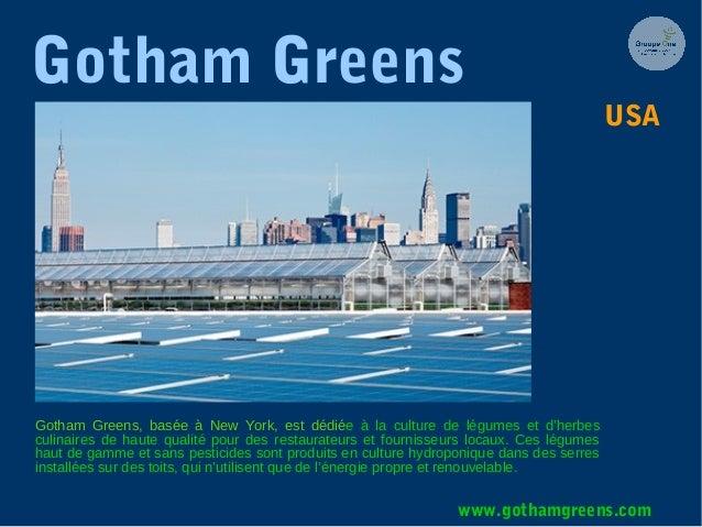 Gotham Greens Gotham Greens, basée à New York, est dédiée à la culture de légumes et d'herbes culinaires de haute qualité ...