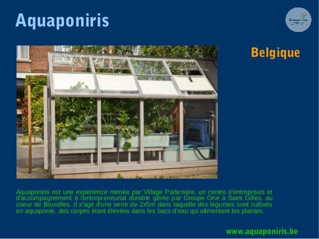 Aquaponiris Aquaponiris est une expérience menée par Village Partenaire, un centre d'entreprises et d'accompagnement à l'e...