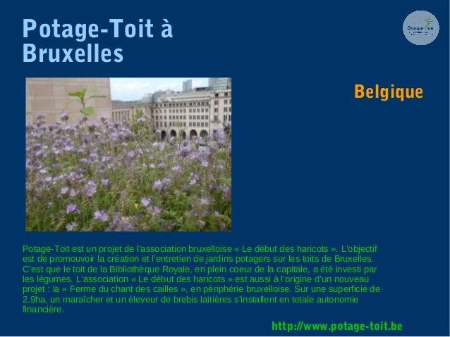 Potage-Toit à Bruxelles Potage-Toit est un projet de l'association bruxelloise « Le début des haricots ». L'objectif est d...
