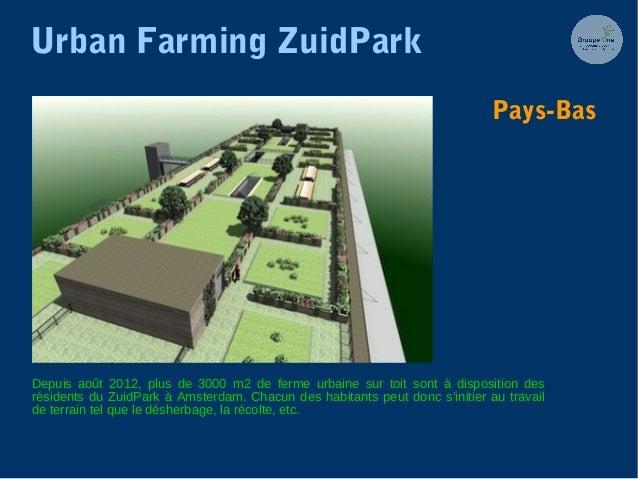 Urban Farming ZuidPark Depuis août 2012, plus de 3000 m2 de ferme urbaine sur toit sont à disposition des résidents du Zui...